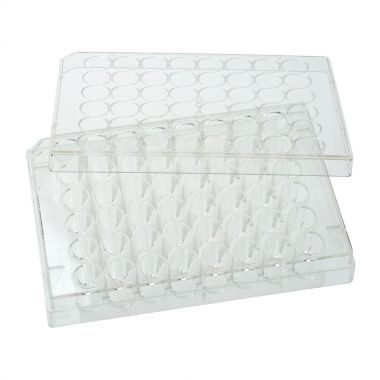 Celltreat 48 Well Non-treated Plate with Lid, Individual, Sterile, CS/100