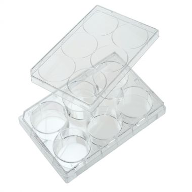 Celltreat 6 Well Tissue CuLture Plate with Lid, Sterile, 50/case