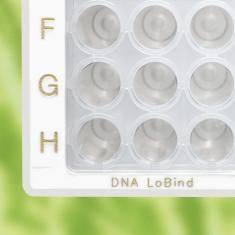 DNA LoBind DWP 96/1000, PCR clean, CS/20 (5x PK/4)
